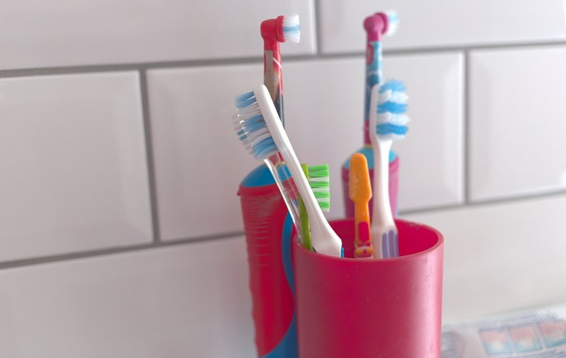 Multiple toothbrushes sitting upright in holders on a bathroom countertop